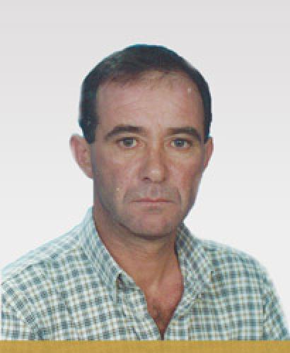 Manuel Alcino Mendes Ribeiro