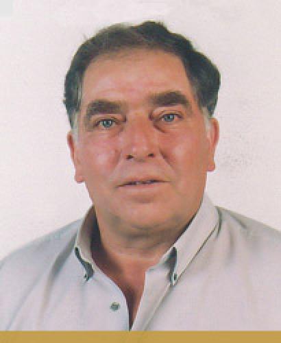 Manuel Sousa Fernandes Pereira